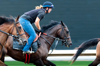 Equestrian, Horse and rider, Horse racing, Horses, Keenland, Lexington KY, Morning workout, Thoroughbred,
