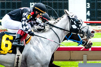 """Arlington Park"", Horse, ""Horse racing"", Paddock, Thoroughbred, horses, ""Photo finish"", horses"